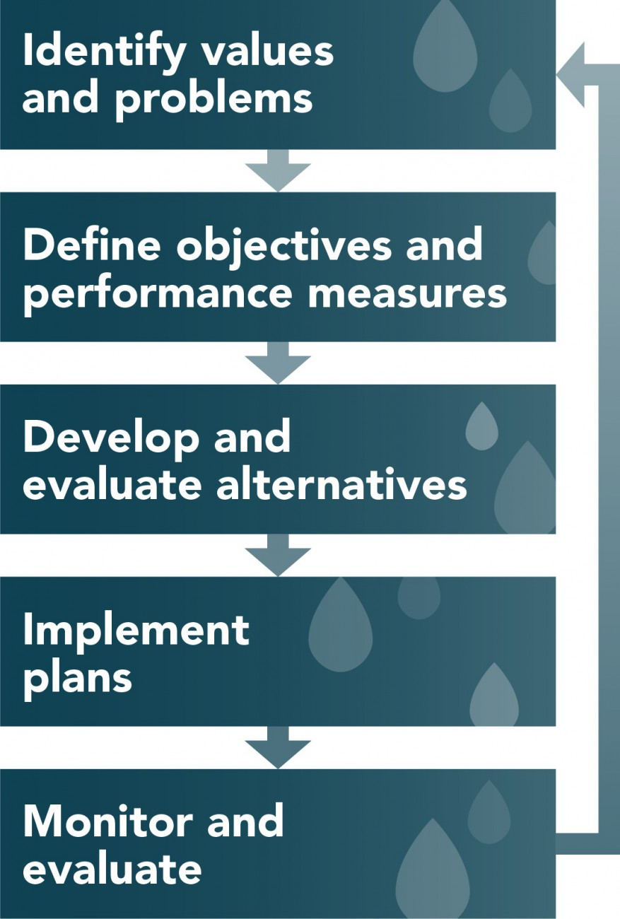 Graphic of our five-step process for creating the ISMP