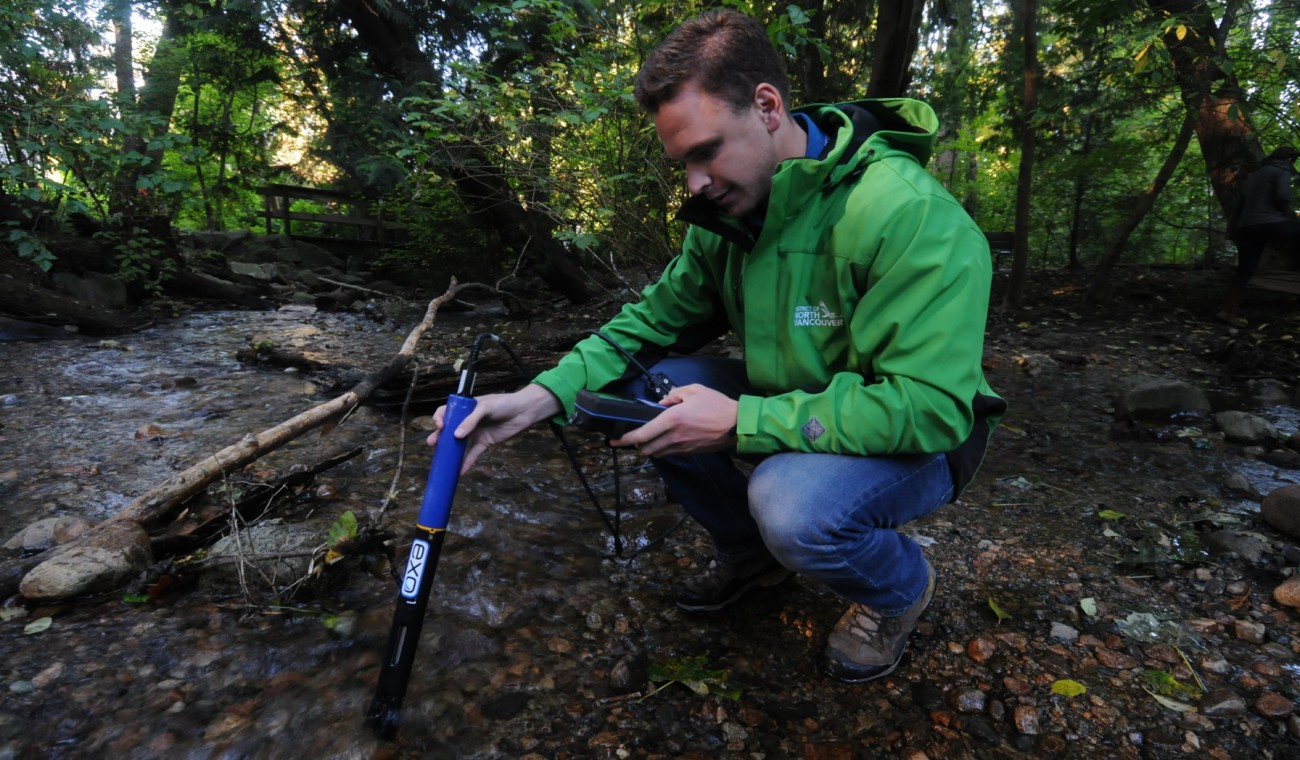 DNV staff member inspecting water quality in a stream