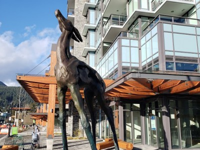 The Residences at Lynn Valley.
