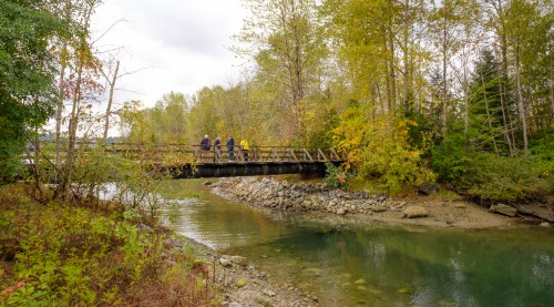 A group of hikers stand on a bridge overlooking a creek.