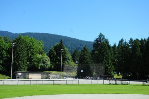 A playing field in Delbrook Park with mountains in the background