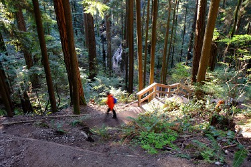 Woman hiking in Lynn Canyon
