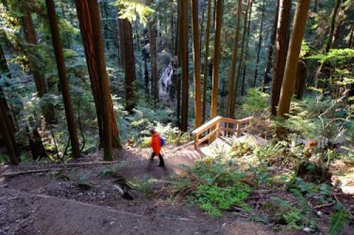 Woman hiking in Lynn Canyon