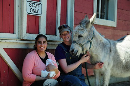Staff with animals at Maplewood Farm