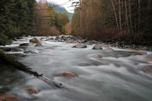 Image of Lynn Creek