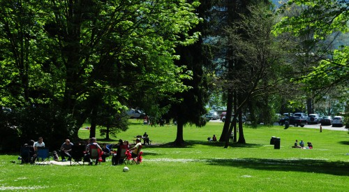 A family picnic on the grass in a park