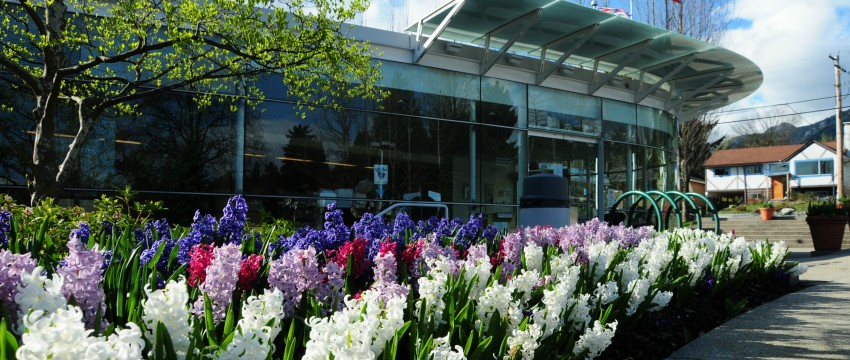 Exterior of District Hall with flowers blooming in front